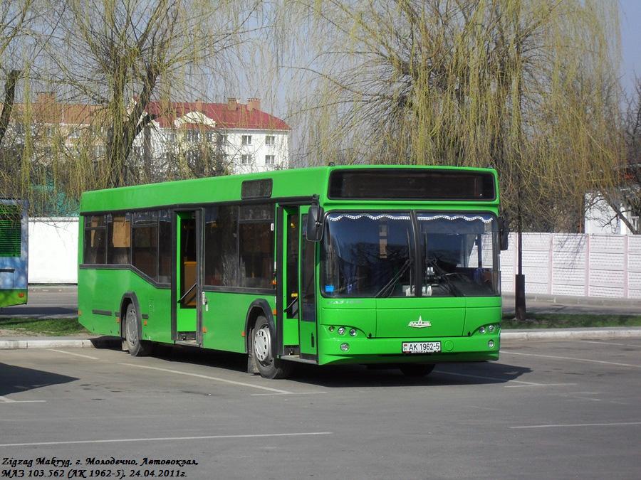 Molodechno, MAZ-103.562 # 23423