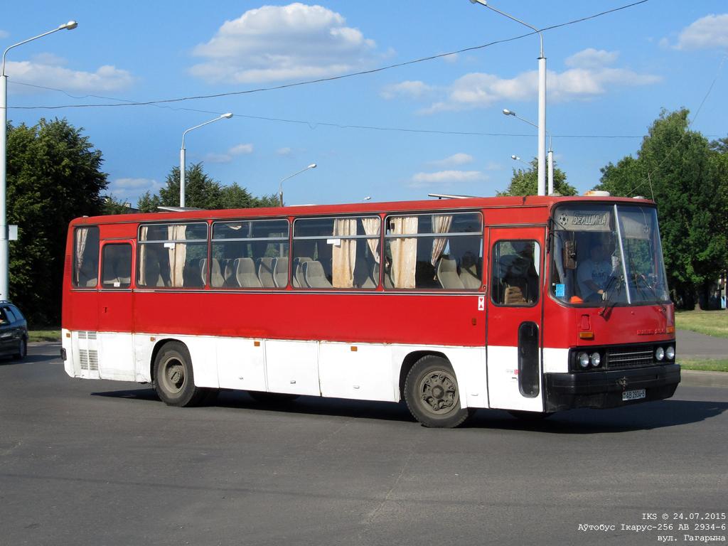 Bobruisk, Ikarus 256.** # АВ 2934-6