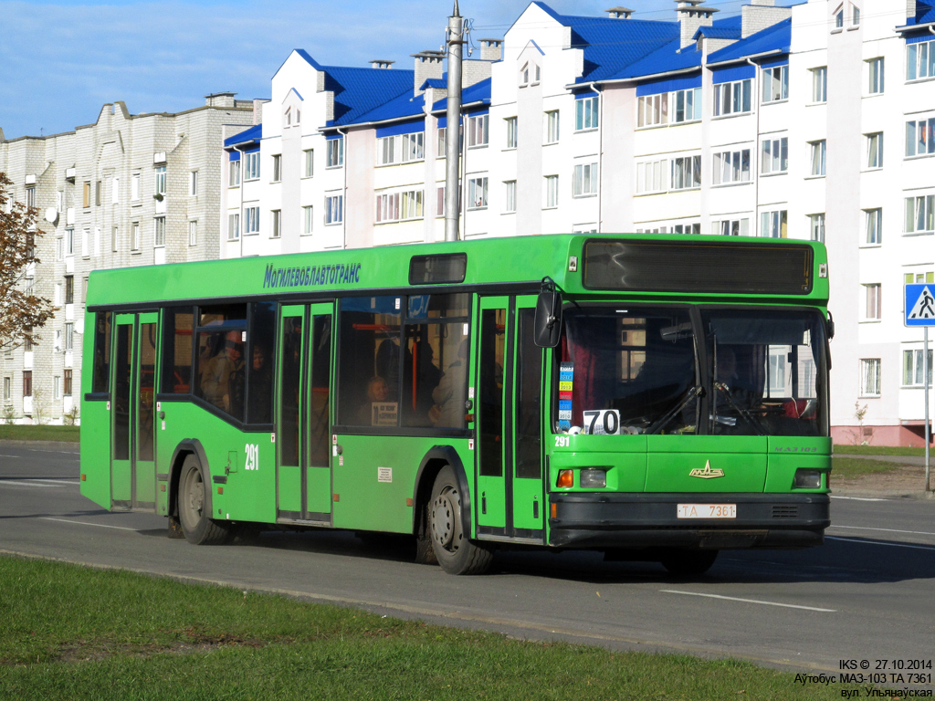 Bobruisk, MAZ-103.065 # 291