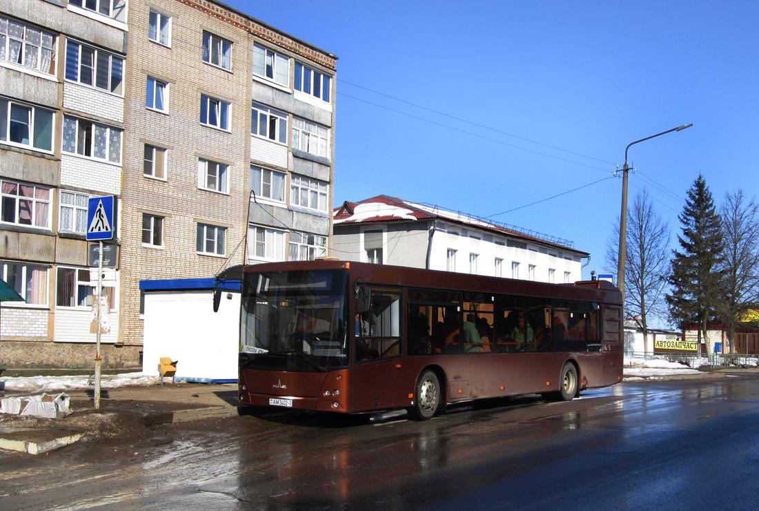 Rogochov, MAZ-203.076 # АМ 3402-3
