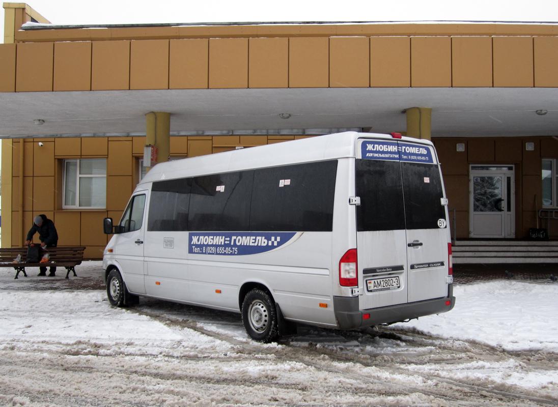 Zhlobin, Юнилайн-3602 (MB Sprinter 311CDI) # 20280